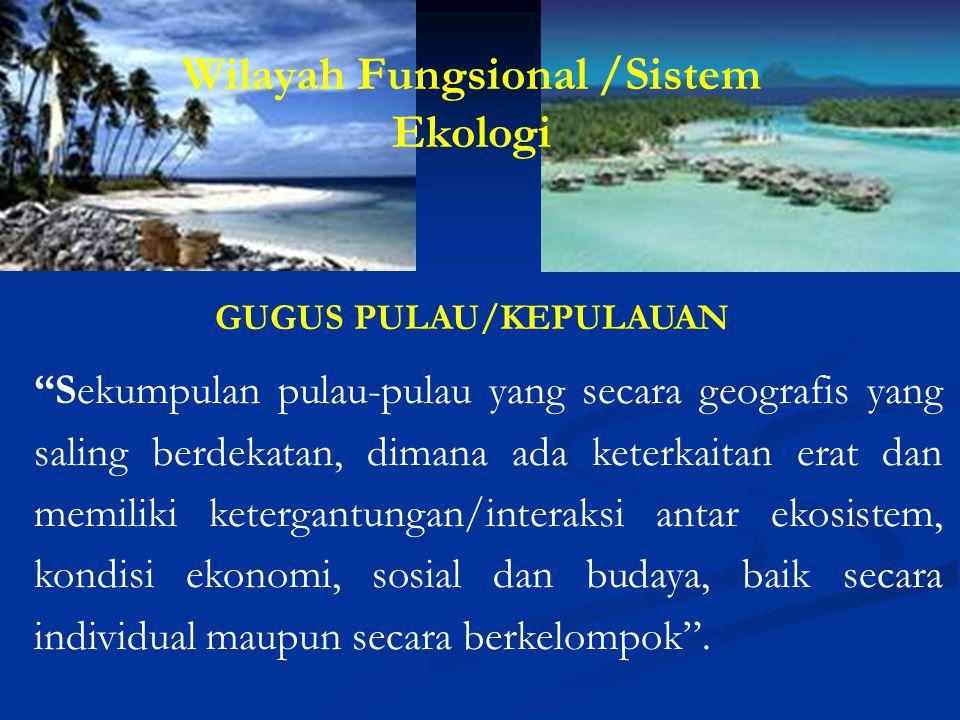 """""""Sekumpulan pulau-pulau yang secara geografis yang saling berdekatan, dimana ada keterkaitan erat dan memiliki ketergantungan/interaksi antar ekosiste"""