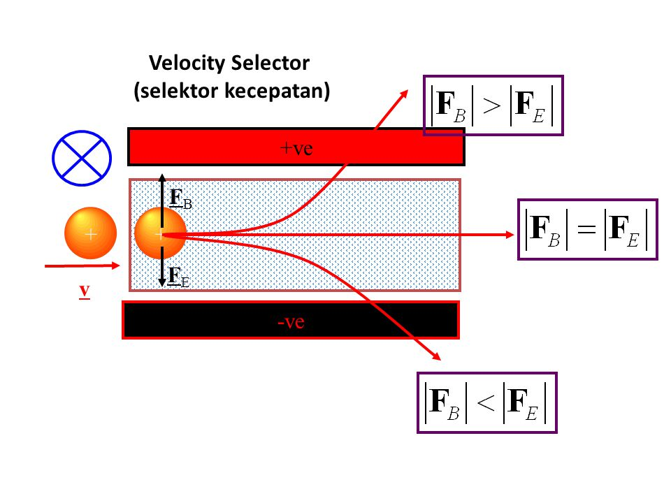 Velocity Selector v FBFB + Berkas partikel bermuatan dalam medan B + v -ve +ve + FEFE Gaya magnetik Gaya listrik