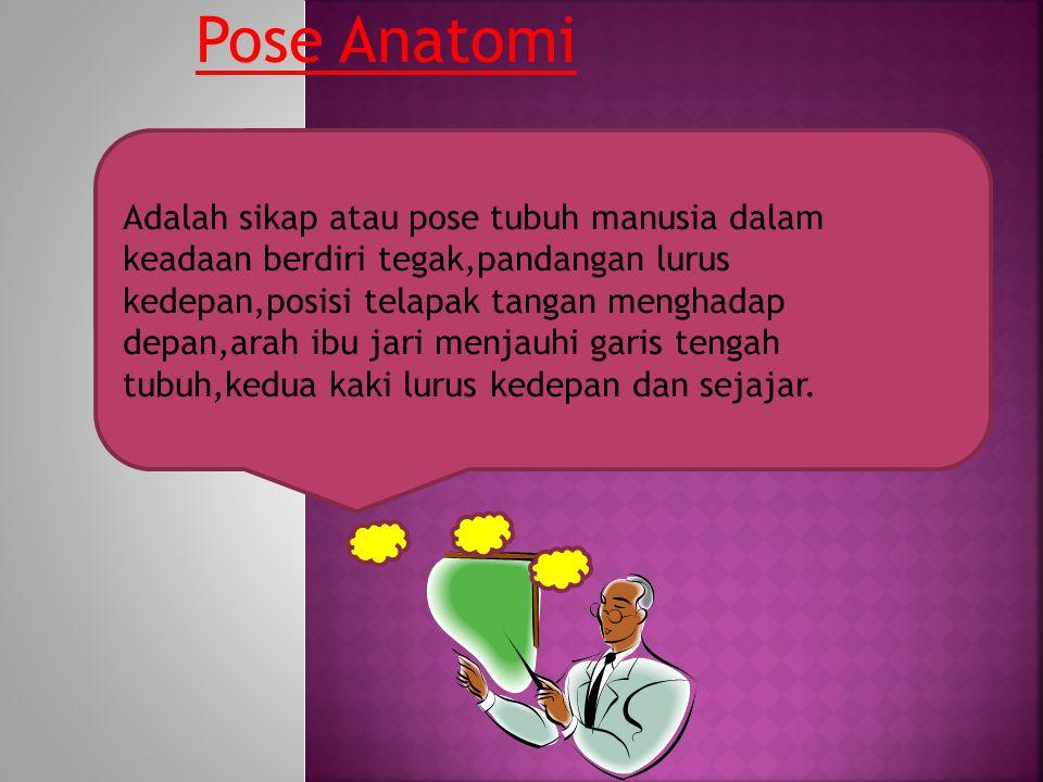 Pose Anatomi Adalah sikap atau pose tubuh manusia dalam keadaan berdiri tegak,pandangan lurus kedepan,posisi telapak tangan menghadap depan,arah ibu jari menjauhi garis tengah tubuh,kedua kaki lurus kedepan dan sejajar.