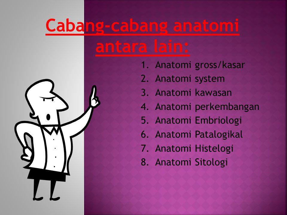 Cabang-cabang anatomi antara lain: 1.Anatomi gross/kasar 2.