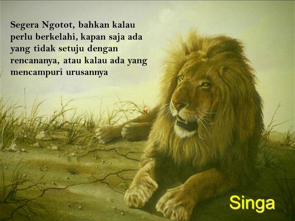 Segera Ngotot, bahkan kalau perlu berkelahi, kapan saja ada yang tidak setuju dengan rencananya, atau kalau ada yang mencampuri urusannya Singa