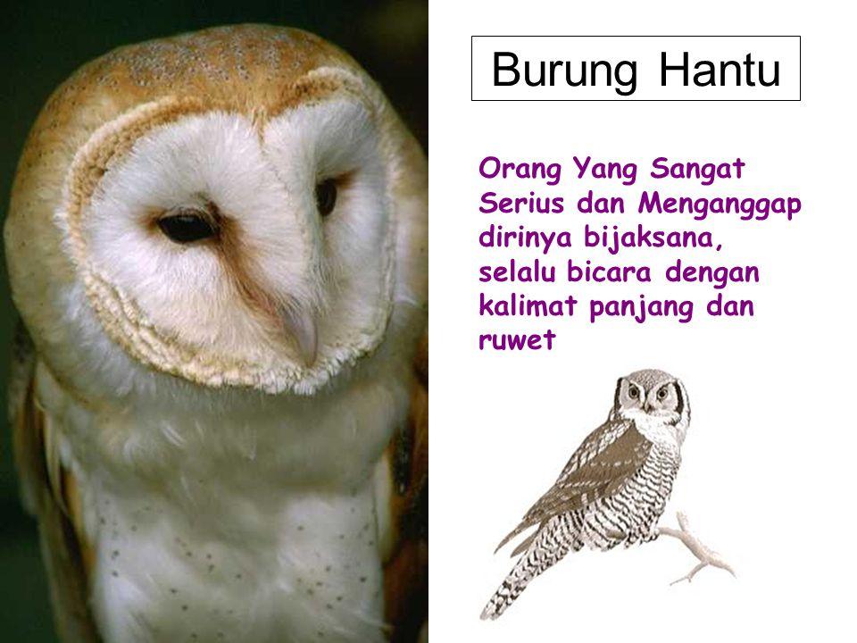 Burung Hantu Orang Yang Sangat Serius dan Menganggap dirinya bijaksana, selalu bicara dengan kalimat panjang dan ruwet