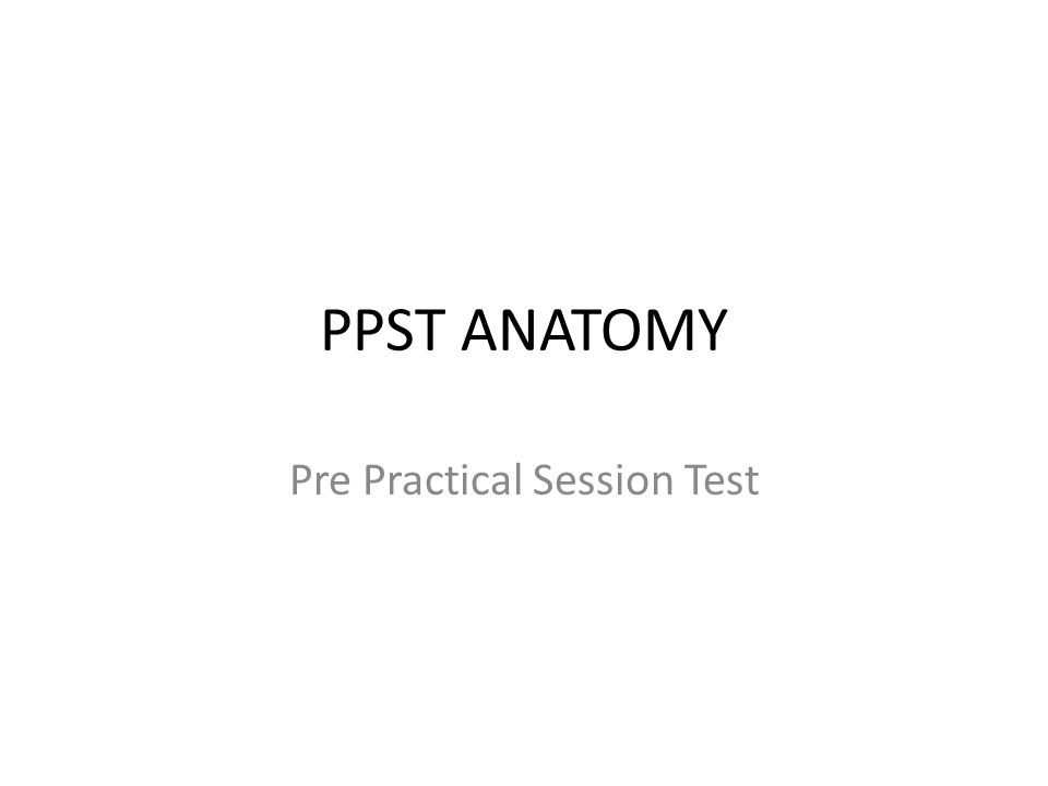 PPST ANATOMY Pre Practical Session Test