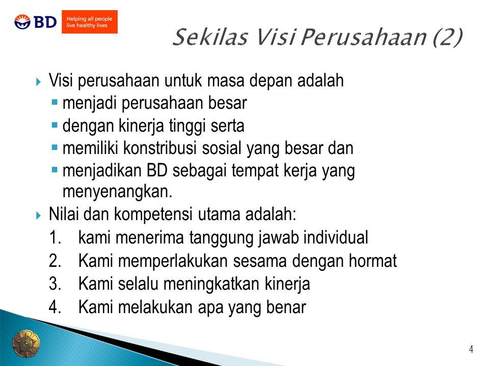 5 Sekilas Visi Perusahaan (3) Komitmen BD untuk terus menuerus mengembangkan fokus kami dalam area kunci sebagai berikut: 1.