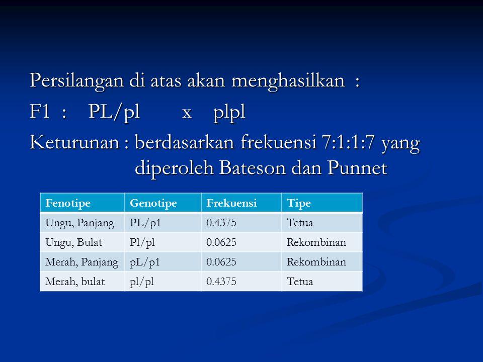 Persilangan di atas akan menghasilkan : F1 : PL/pl x plpl Keturunan : berdasarkan frekuensi 7:1:1:7 yang diperoleh Bateson dan Punnet FenotipeGenotipe