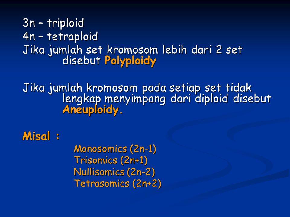 3n – triploid 4n – tetraploid Jika jumlah set kromosom lebih dari 2 set disebut Polyploidy Jika jumlah kromosom pada setiap set tidak lengkap menyimpa