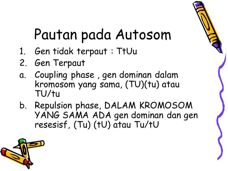 Pautan pada Autosom 1.Gen tidak terpaut : TtUu 2.Gen Terpaut a.Coupling phase, gen dominan dalam kromosom yang sama, (TU)(tu) atau TU/tu b.Repulsion p