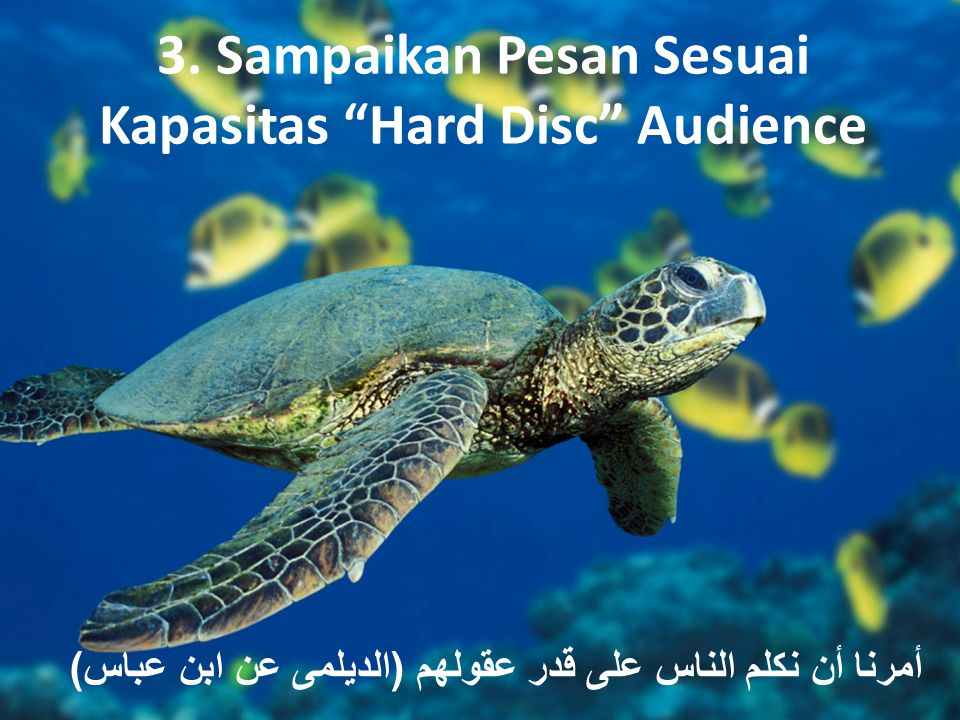 "3. Sampaikan Pesan Sesuai Kapasitas ""Hard Disc"" Audience أمرنا أن نكلم الناس على قدر عقولهم ( الديلمى عن ابن عباس )"