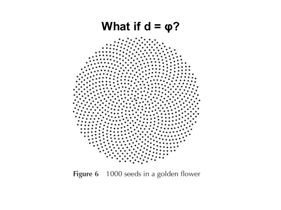 What if d = φ?