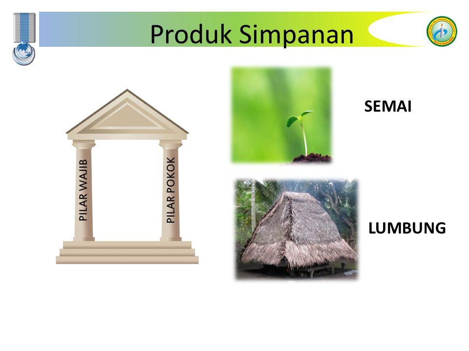 Pandai Junior 1.Produk Simpanan untuk menanamkan budaya menabung sejak dini dikalangan anak-anak.