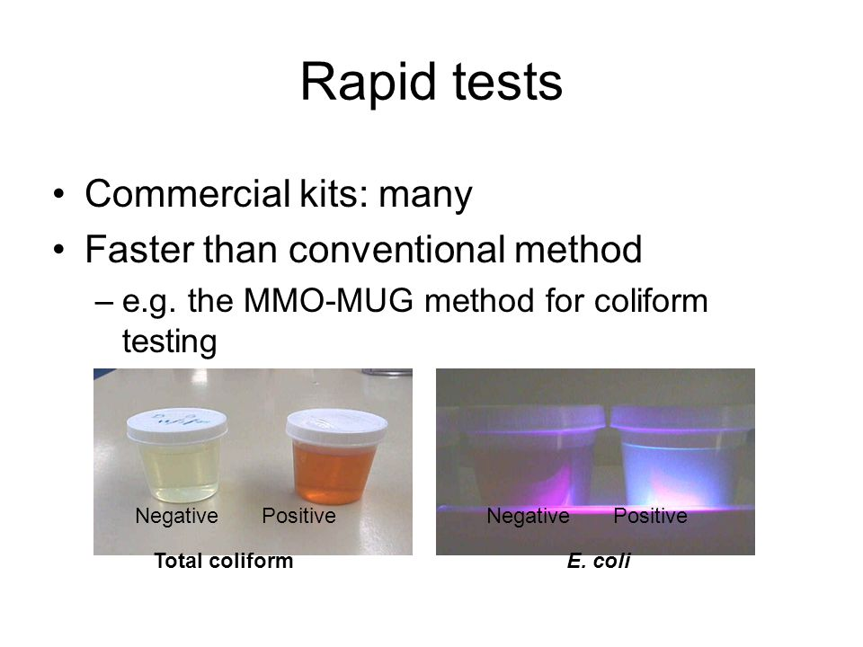Rapid tests Commercial kits: many Faster than conventional method –e.g.