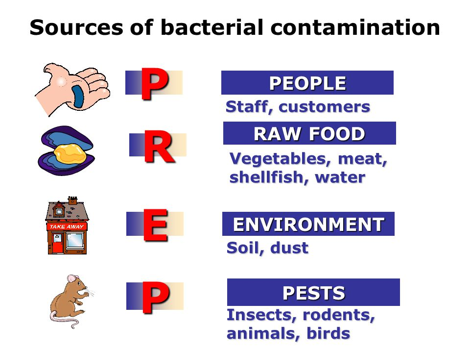 Sources of bacterial contamination Staff, customers PPEOPLE Vegetables, meat, shellfish, water R RAW FOOD Soil, dust EENVIRONMENT Insects, rodents, animals, birds PPESTS