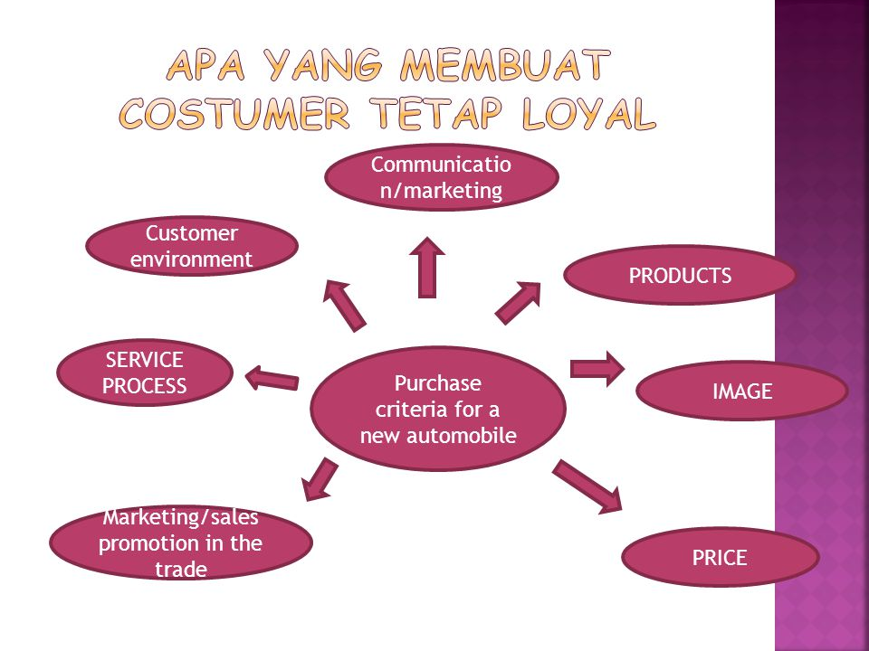 Purchase criteria for a new automobile Communicatio n/marketing PRODUCTS IMAGE SERVICE PROCESS Customer environment Marketing/sales promotion in the trade PRICE