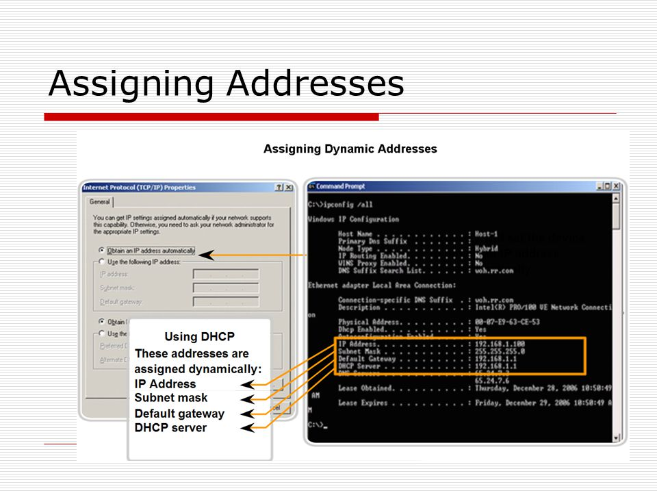 Assigning Addresses
