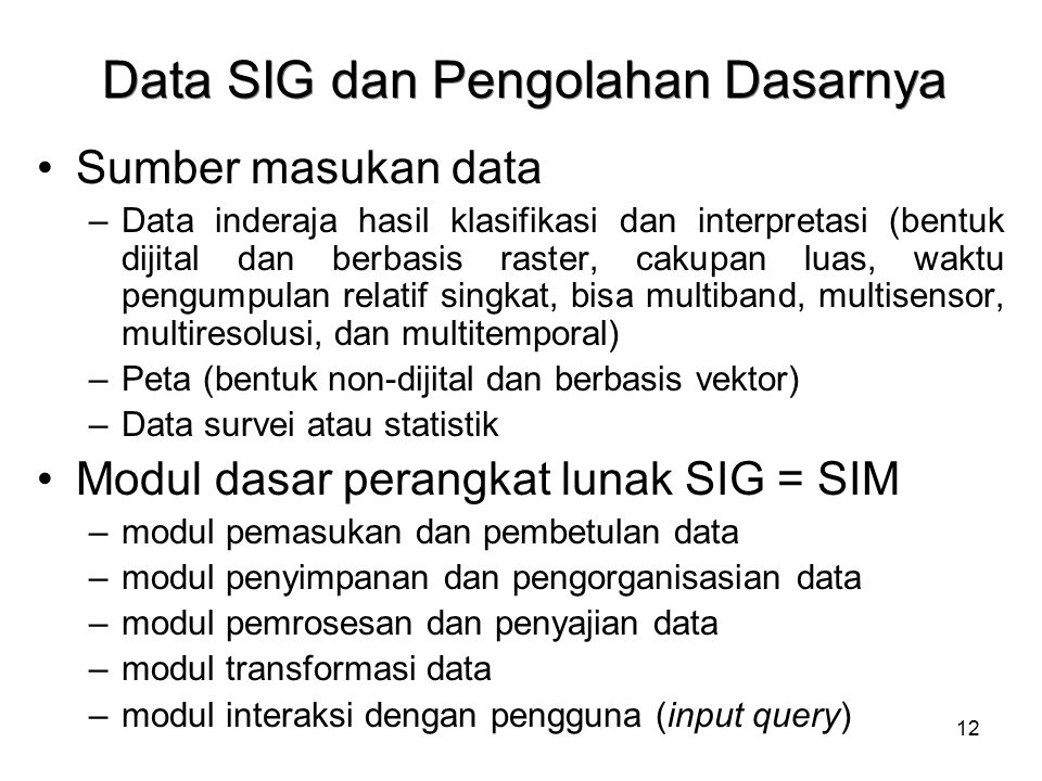 12 Data SIG dan Pengolahan Dasarnya Sumber masukan data –Data inderaja hasil klasifikasi dan interpretasi (bentuk dijital dan berbasis raster, cakupan