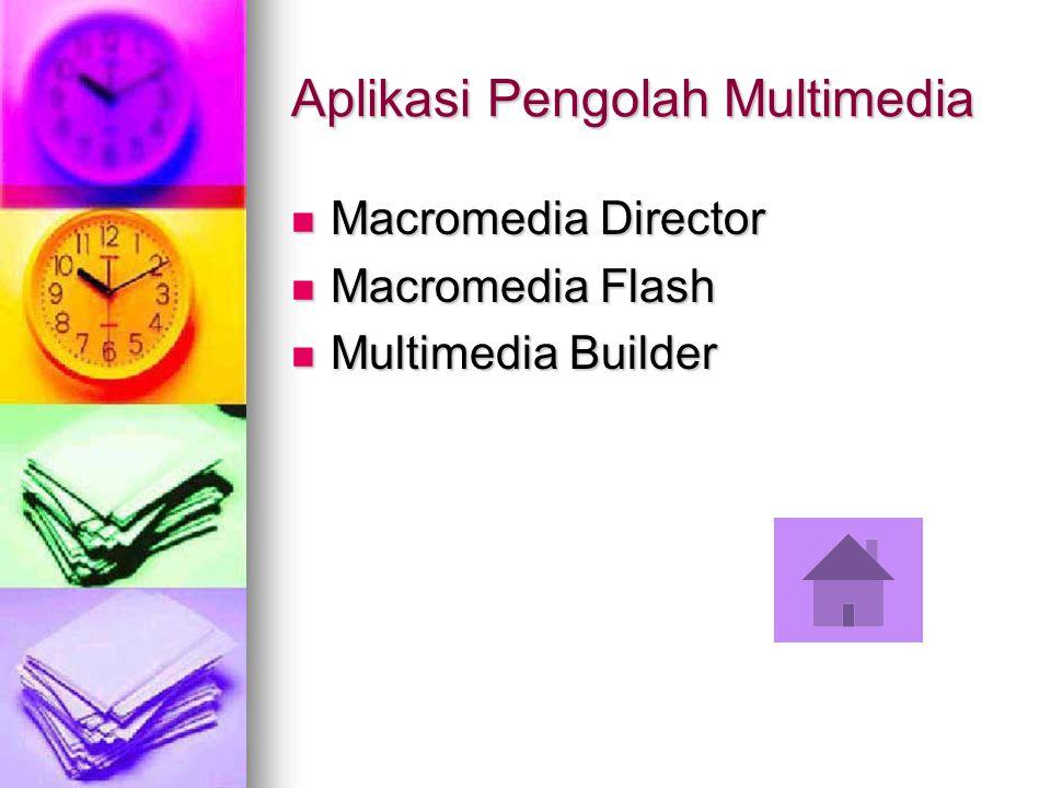 Aplikasi Pengolah Multimedia Macromedia Director Macromedia Director Macromedia Flash Macromedia Flash Multimedia Builder Multimedia Builder