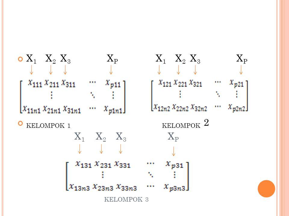 X 1 X 2 X 3 X P KELOMPOK 1KELOMPOK 2 X 1 X 2 X 3 X P KELOMPOK 3