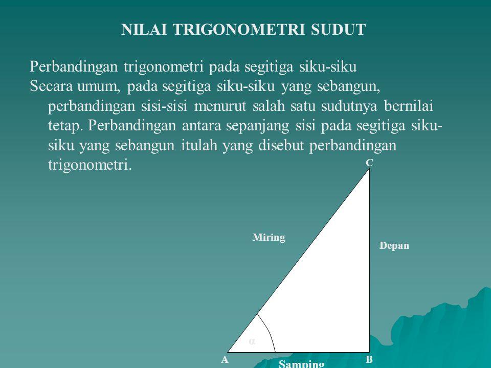 NILAI TRIGONOMETRI SUDUT Perbandingan trigonometri pada segitiga siku-siku Secara umum, pada segitiga siku-siku yang sebangun, perbandingan sisi-sisi