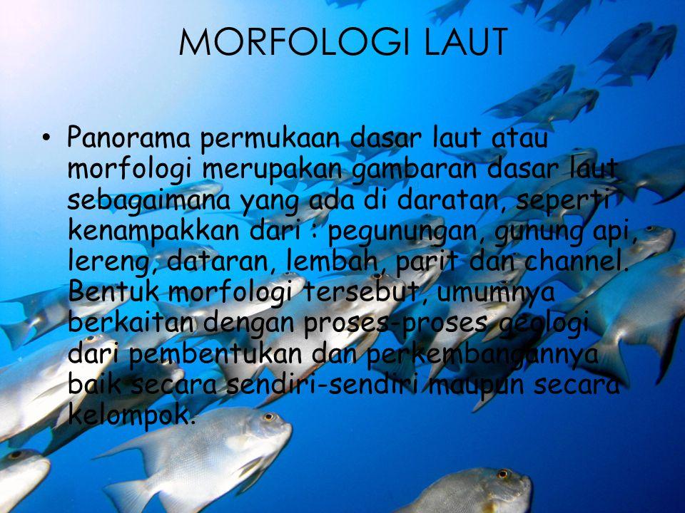MORFOLOGI LAUT Panorama permukaan dasar laut atau morfologi merupakan gambaran dasar laut sebagaimana yang ada di daratan, seperti kenampakkan dari :