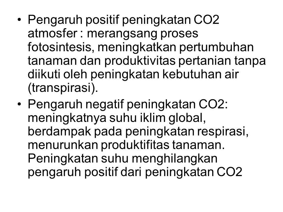 Pengaruh positif peningkatan CO2 atmosfer : merangsang proses fotosintesis, meningkatkan pertumbuhan tanaman dan produktivitas pertanian tanpa diikuti