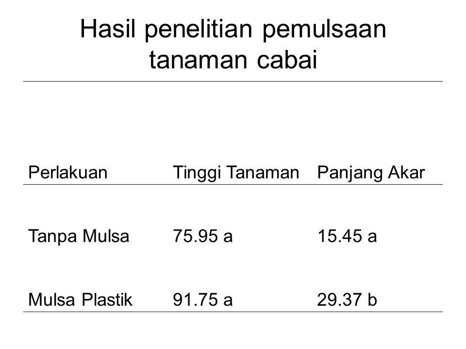 Hasil penelitian pemulsaan tanaman cabai PerlakuanTinggi TanamanPanjang Akar Tanpa Mulsa75.95 a15.45 a Mulsa Plastik91.75 a29.37 b