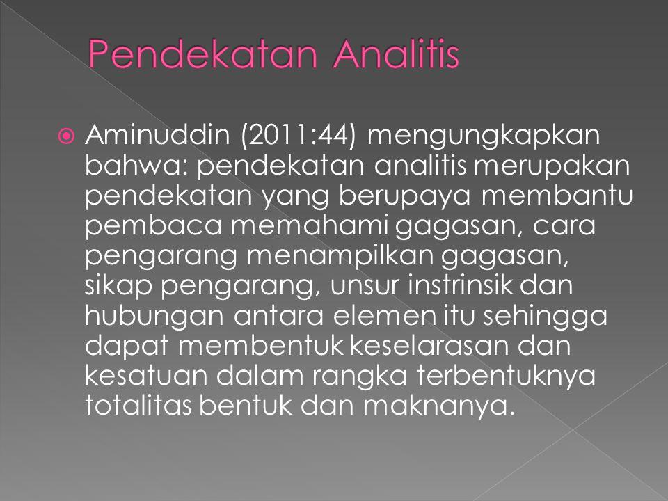  Aminuddin (2011:44) mengungkapkan bahwa: pendekatan analitis merupakan pendekatan yang berupaya membantu pembaca memahami gagasan, cara pengarang me