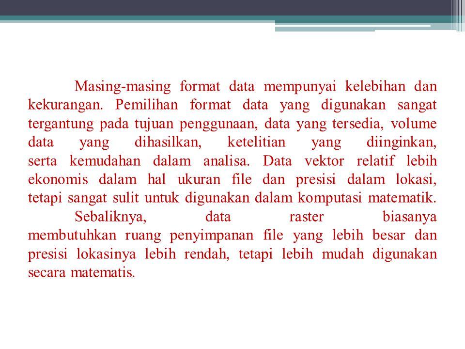 Masing-masing format data mempunyai kelebihan dan kekurangan. Pemilihan format data yang digunakan sangat tergantung pada tujuan penggunaan, data yang