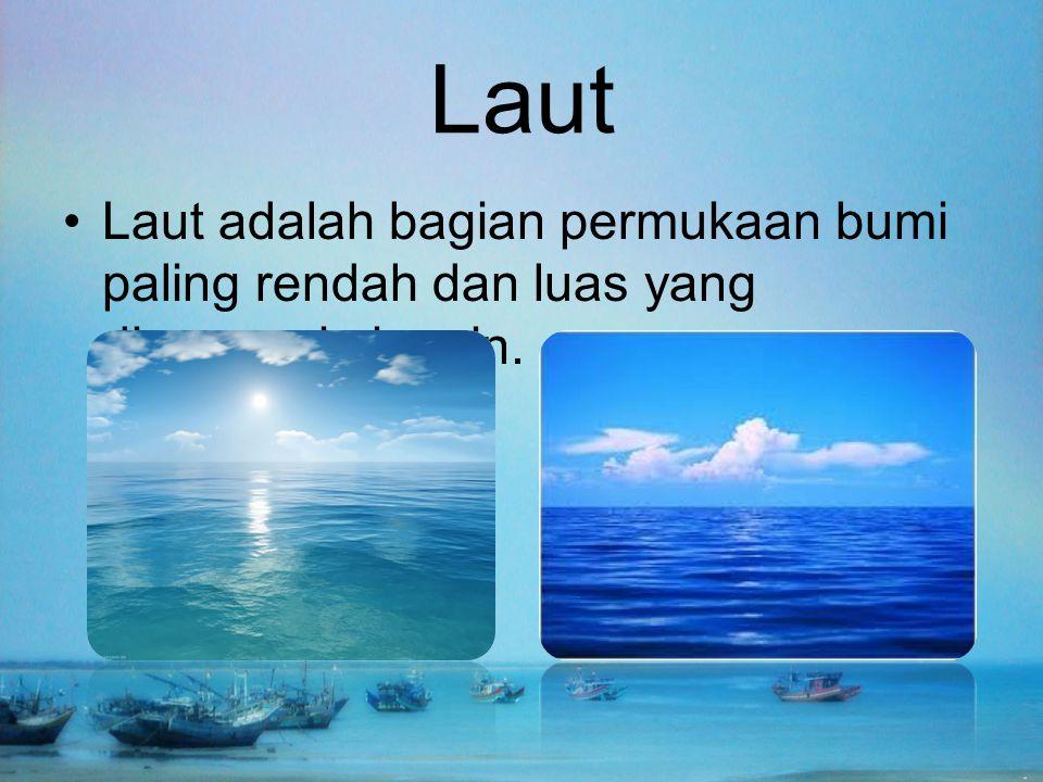 Laut Laut adalah bagian permukaan bumi paling rendah dan luas yang digenangi air asin.