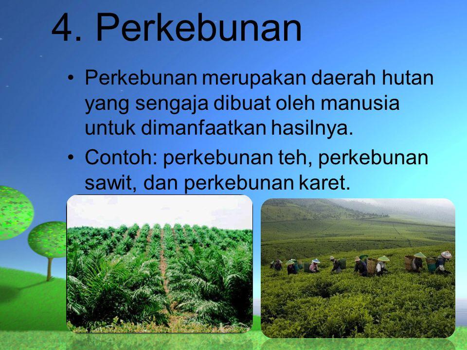 4. Perkebunan Perkebunan merupakan daerah hutan yang sengaja dibuat oleh manusia untuk dimanfaatkan hasilnya. Contoh: perkebunan teh, perkebunan sawit