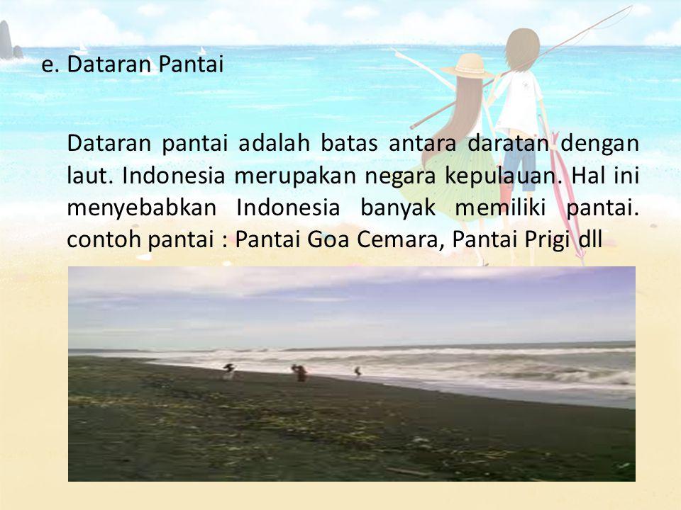 e. Dataran Pantai Dataran pantai adalah batas antara daratan dengan laut. Indonesia merupakan negara kepulauan. Hal ini menyebabkan Indonesia banyak m