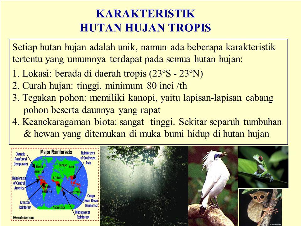 KARAKTERISTIK HUTAN HUJAN TROPIS Setiap hutan hujan adalah unik, namun ada beberapa karakteristik tertentu yang umumnya terdapat pada semua hutan huja