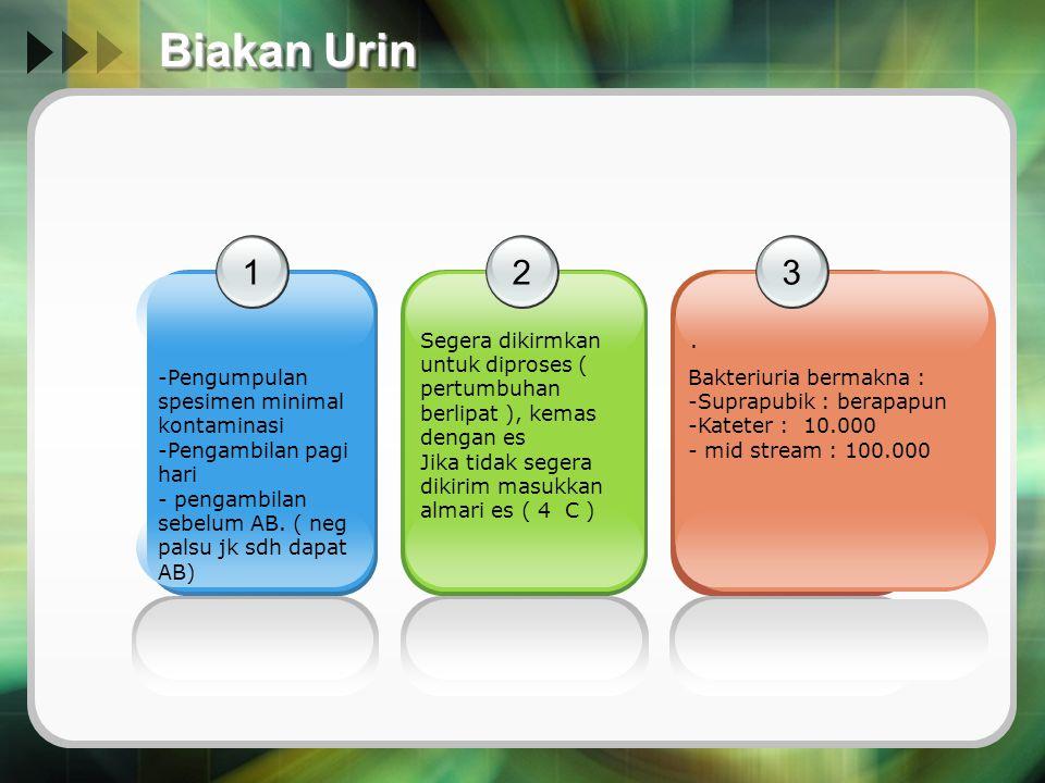 Biakan Urin 1 -Pengumpulan spesimen minimal kontaminasi -Pengambilan pagi hari - pengambilan sebelum AB. ( neg palsu jk sdh dapat AB) 2 Segera dikirmk