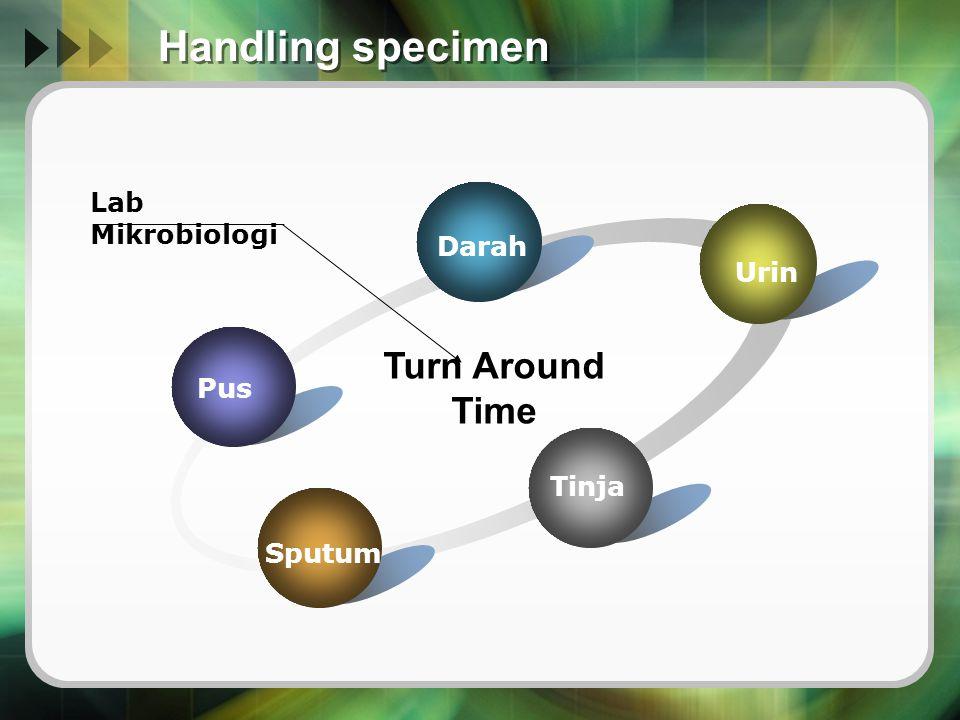 Handling specimen Pus Darah Urin Tinja Sputum Turn Around Time Lab Mikrobiologi