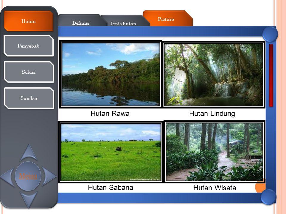 Picture Jenis hutan Definisi Hutan Penyebab Solusi Sumber Hutan RawaHutan Lindung Hutan Sabana Hutan Wisata Menu