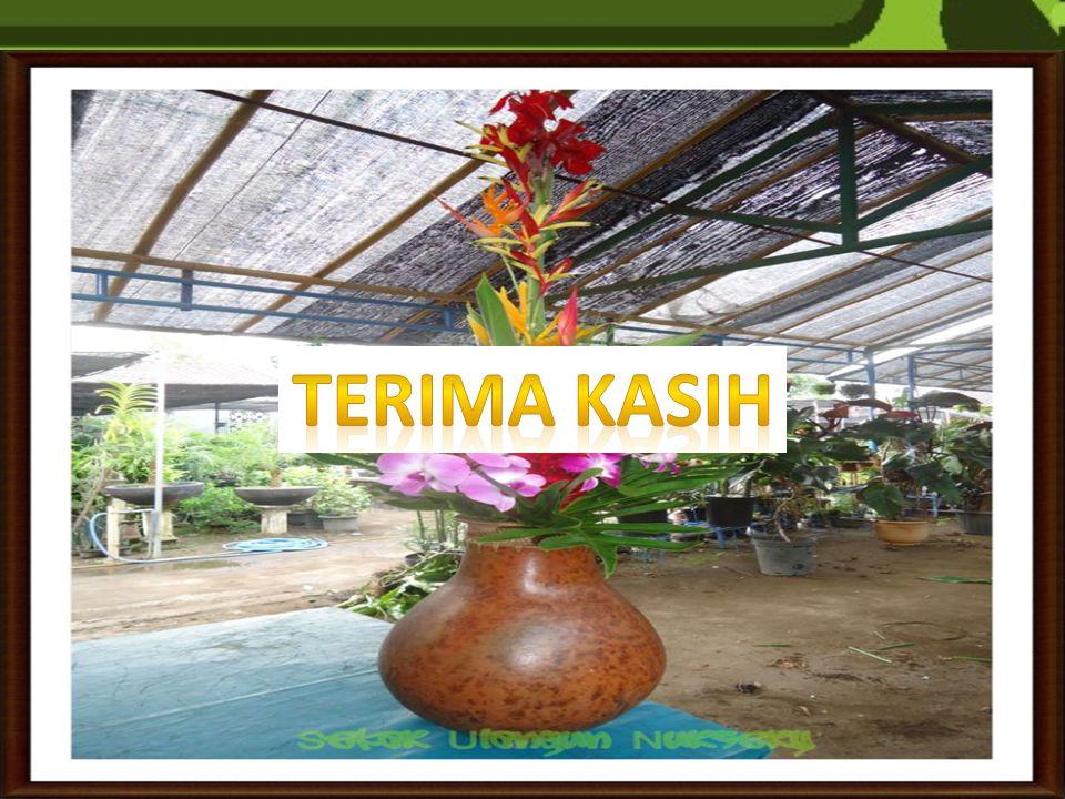 INDONESIA MEMPUNYAI POTENSI BESAR UNTUK MENGEMBANGKAN FLORIKULTURA TROPIS. PERMINTAAN PASAR DALAM & LUAR NEGERI TINGGI, NAMUN PRODUKSI MASIH RENDAH. M