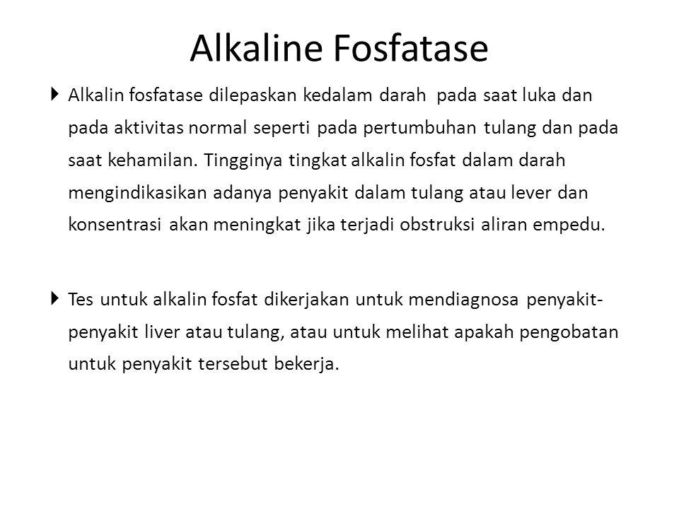  Alkalin fosfatase dilepaskan kedalam darah pada saat luka dan pada aktivitas normal seperti pada pertumbuhan tulang dan pada saat kehamilan. Tinggin