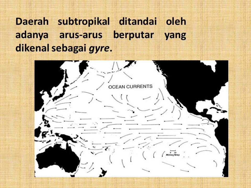 Daerah subtropikal ditandai oleh adanya arus-arus berputar yang dikenal sebagai gyre.