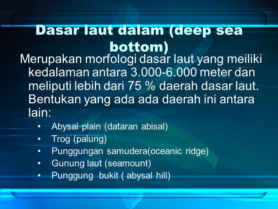 Dasar laut dalam (deep sea bottom) Merupakan morfologi dasar laut yang meiliki kedalaman antara 3.000-6.000 meter dan meliputi lebih dari 75 % daerah