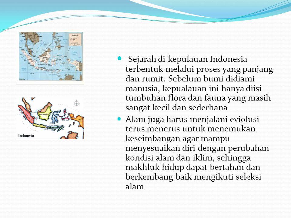 Sejarah di kepulauan Indonesia terbentuk melalui proses yang panjang dan rumit. Sebelum bumi didiami manusia, kepualauan ini hanya diisi tumbuhan flor
