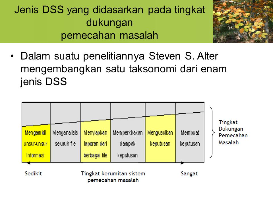 Dampak Pengambilan Keputusan DSS juga memungkinkan para manajer untuk melihat dampak-dampak yang mungkin timbul dari berbagai keputusan yang diambil.