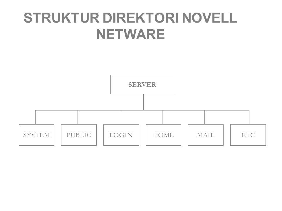 STRUKTUR DIREKTORI NOVELL NETWARE SERVER SYSTEMLOGINHOMEMAILETCPUBLIC