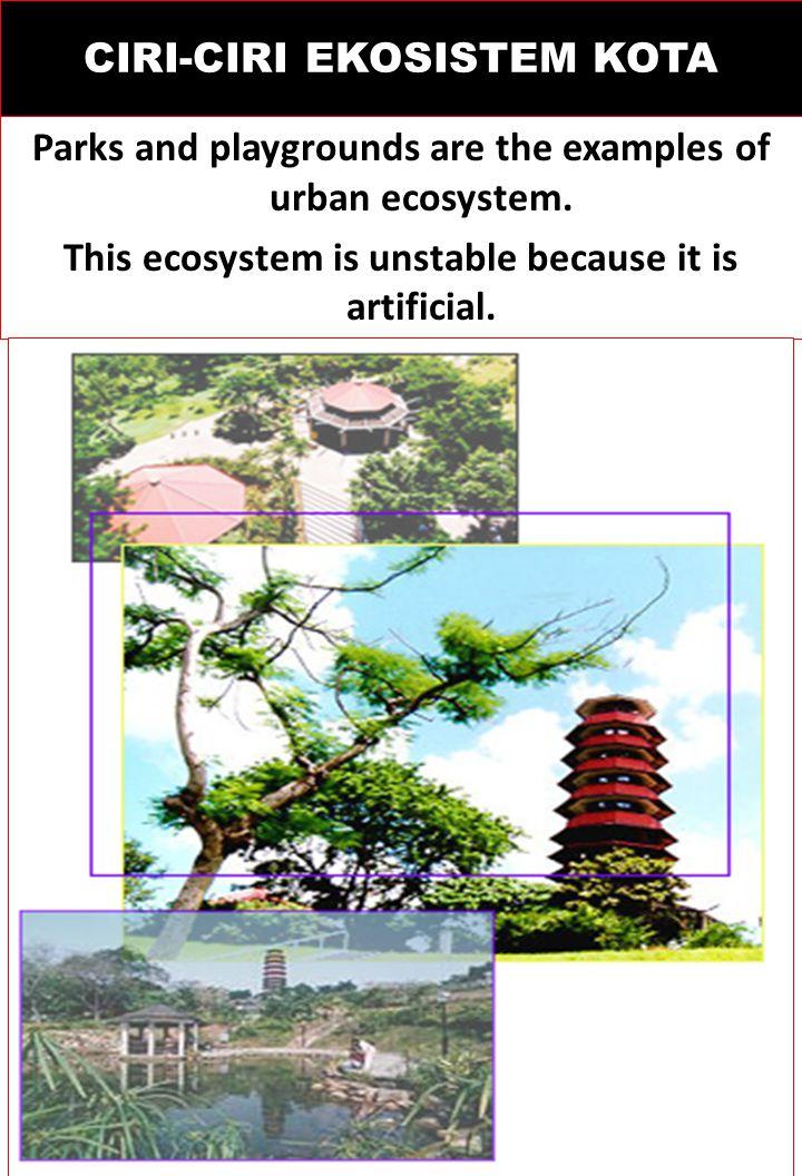EKOSISTEM KOTA ? Ekosistem Kota merupakan habitat binaan dnegan jenis-jenis flora dan fauna non-alamiah untuk menyediakan kenyamanan lingkungan bagi r