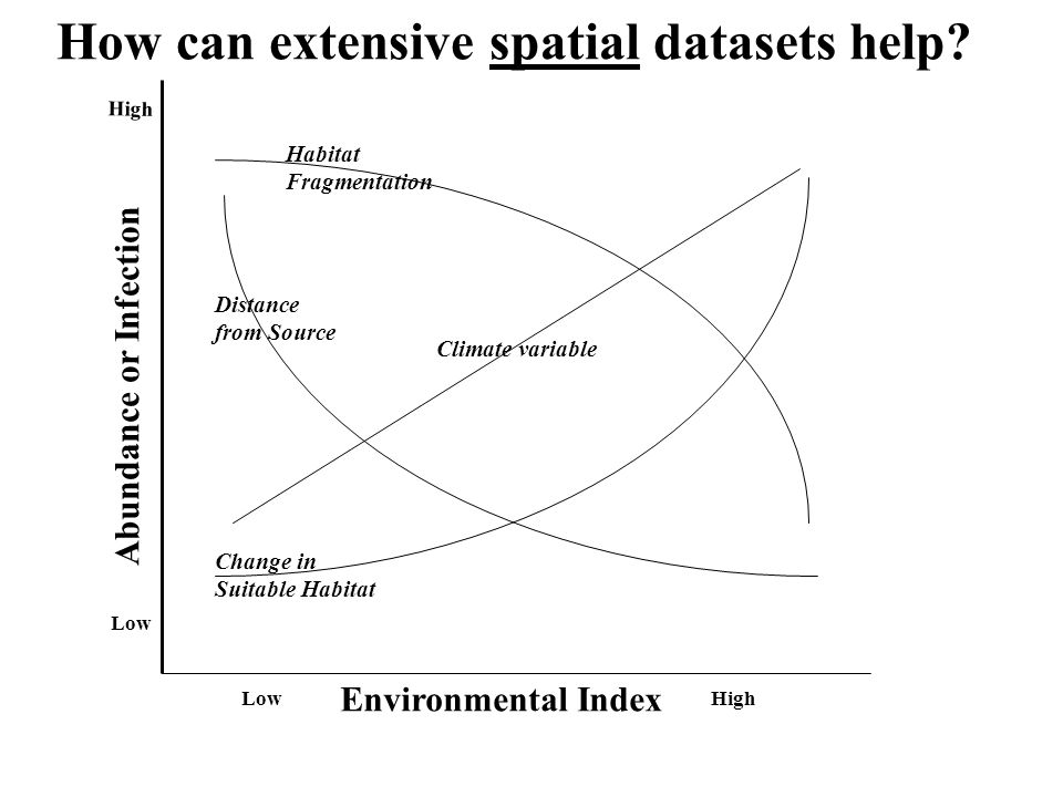 Environmental Index Abundance or Infection LowHigh Low High Habitat Fragmentation Change in Suitable Habitat Distance from Source Climate variable How