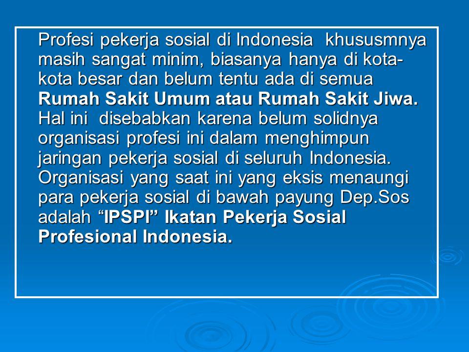 Profesi pekerja sosial di Indonesia khususmnya masih sangat minim, biasanya hanya di kota- kota besar dan belum tentu ada di semua Rumah Sakit Umum at