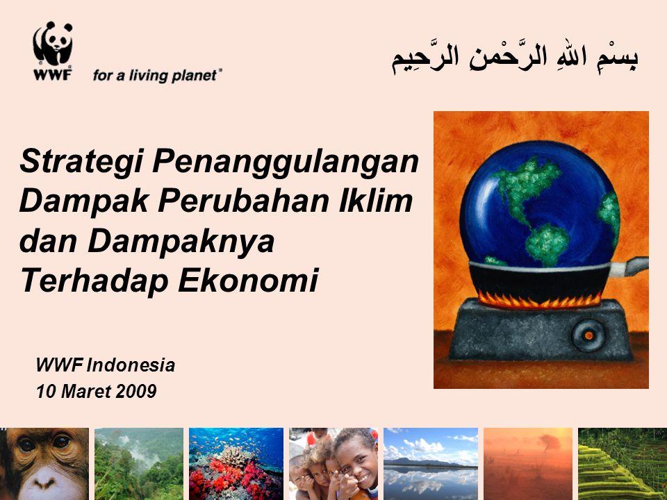 Strategi Penanggulangan Dampak Perubahan Iklim dan Dampaknya Terhadap Ekonomi WWF Indonesia 10 Maret 2009 بِسْمِ اللهِ الرَّحْمنِ الرَّحِيم