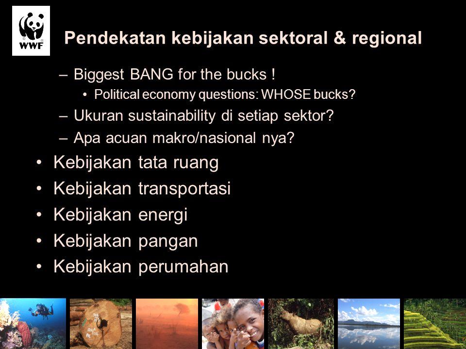 Pendekatan kebijakan sektoral & regional –Biggest BANG for the bucks ! Political economy questions: WHOSE bucks? –Ukuran sustainability di setiap sekt