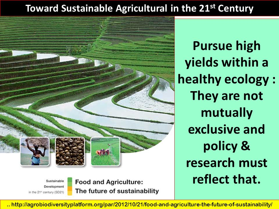Toward Sustainable Agricultural in the 21 st Century.. http://agrobiodiversityplatform.org/par/2012/10/21/food-and-agriculture-the-future-of-sustainab