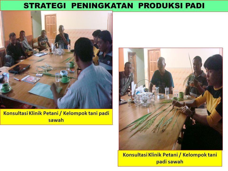 STRATEGI PENINGKATAN PRODUKSI PADI Konsultasi Klinik Petani / Kelompok tani padi sawah