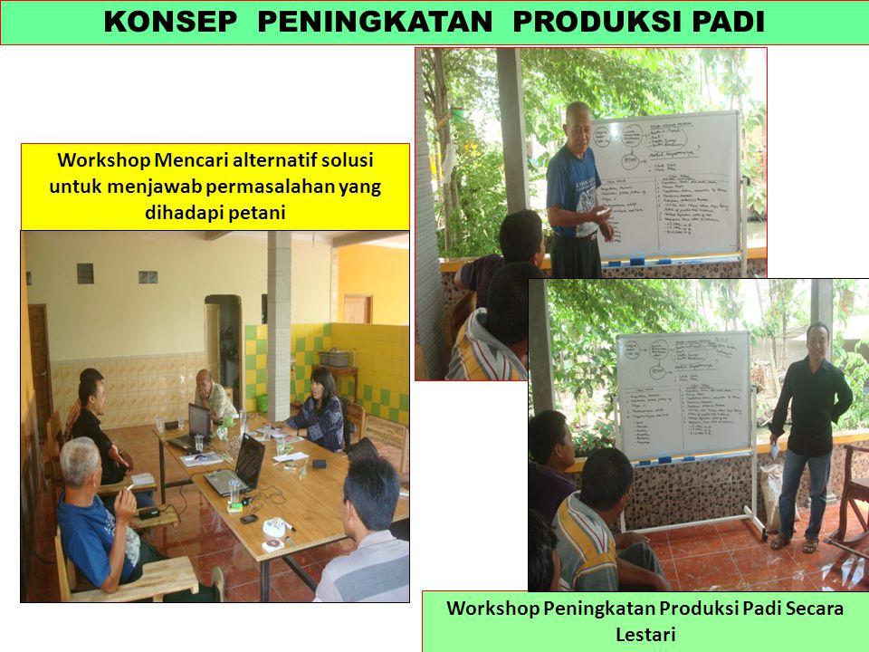 KONSEP PENINGKATAN PRODUKSI PADI Workshop Peningkatan Produksi Padi Secara Lestari Workshop Mencari alternatif solusi untuk menjawab permasalahan yang dihadapi petani