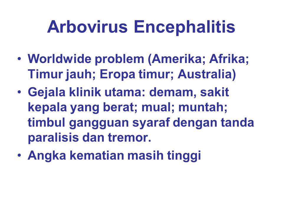 Arbovirus Encephalitis Worldwide problem (Amerika; Afrika; Timur jauh; Eropa timur; Australia) Gejala klinik utama: demam, sakit kepala yang berat; mu